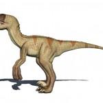 Dromaeosaurus 3d model