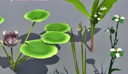plant_coll5
