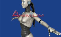 Robot woman 3d model render