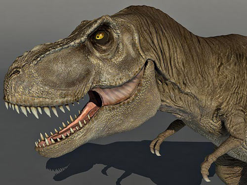 Tyrannosaurus rex 3d model animium 3d models for Mobel 3d download