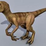 Dinosaur Raptor 3d model