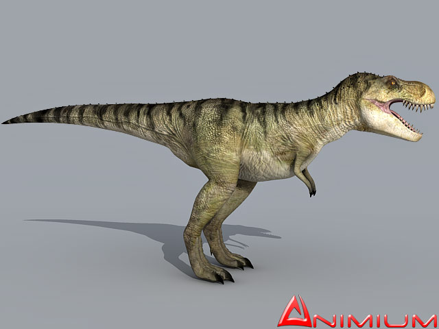 Tyrannosaurus rex 3d model free 3d models tyrannosaurus rex 3d model malvernweather Choice Image