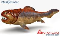 Dunkleosteus 3d model