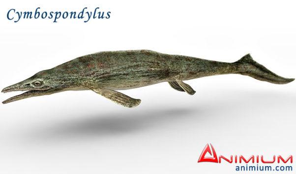 Cymbospondylus 3d model