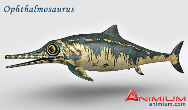 Ophthalmosaurus 3d model