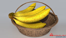 Banana Basket 3d model